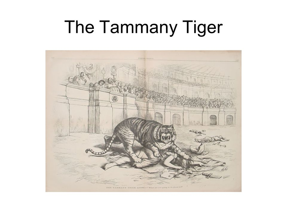The Tammany Tiger