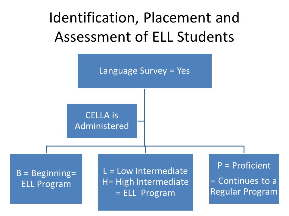 assessment of english language learners Assessment of english language learners alisha c green grand canyon university: esl 533n advanced methodologies of structured english instruction december 12, 2012.
