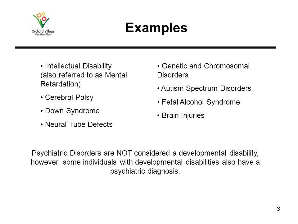 Developmental disabilities examples