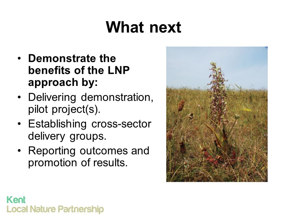 What next Demonstrate the benefits of the LNP approach by: Delivering demonstration, pilot project(s).