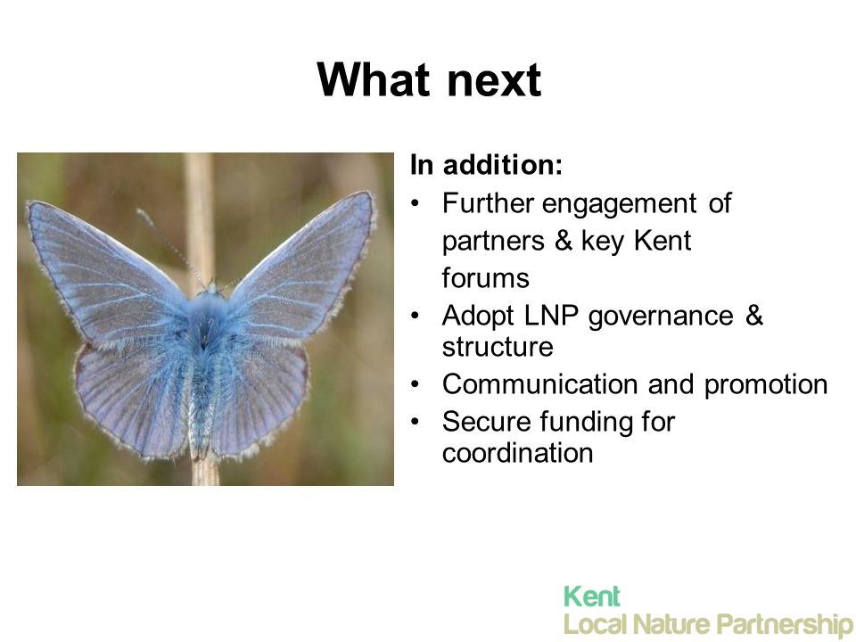 What next In addition: Further engagement of partners & key Kent forums Adopt LNP governance & structure Communication and promotion Secure funding for coordination