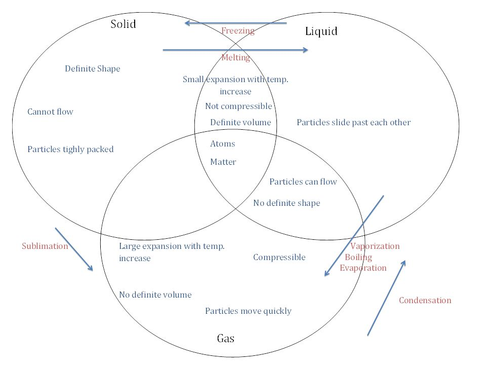 Create Venn Diagrams Online Tipos De Cancer