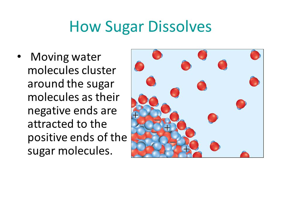 How Sugar Dissolves Moving water molecules cluster around the sugar molecules as their negative ends are attracted to the positive ends of the sugar molecules.