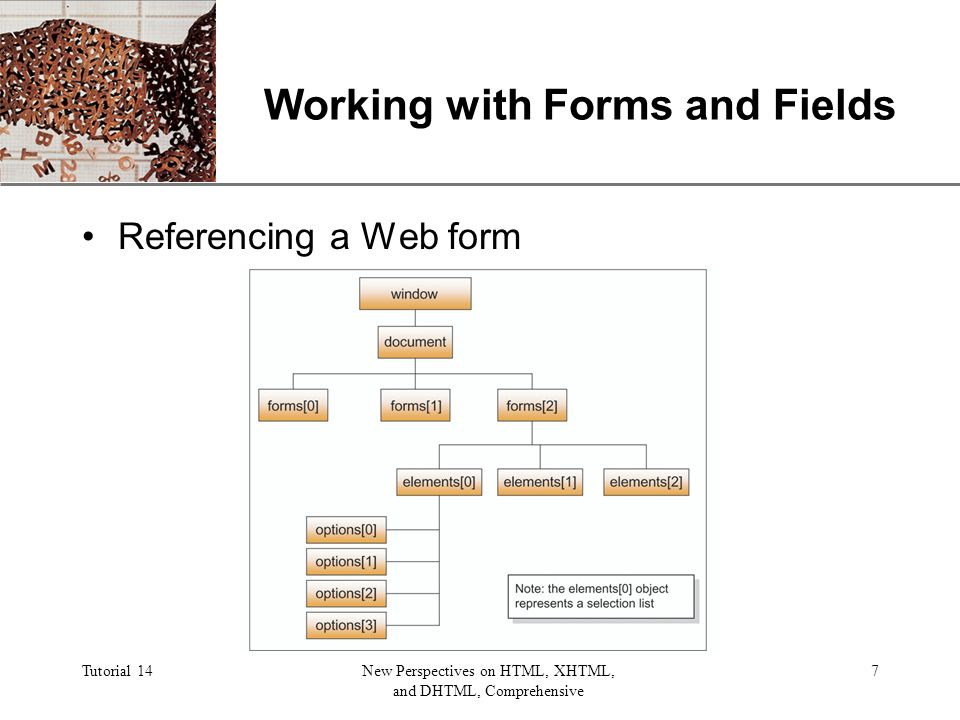 XP Tutorial 14New Perspectives on HTML, XHTML, and DHTML, Comprehensive 7 Working with Forms and Fields Referencing a Web form
