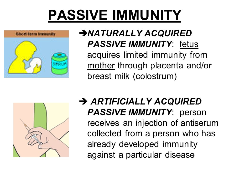 What is the difference between the four types of human immunity.