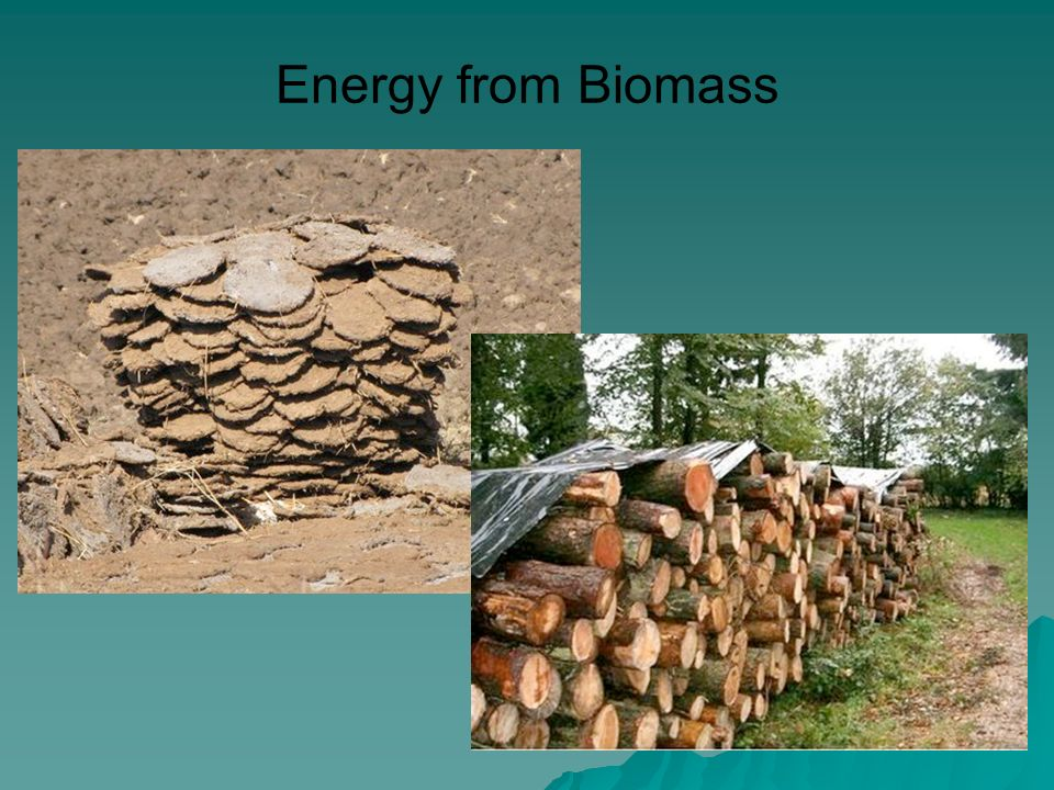 Energy from Biomass