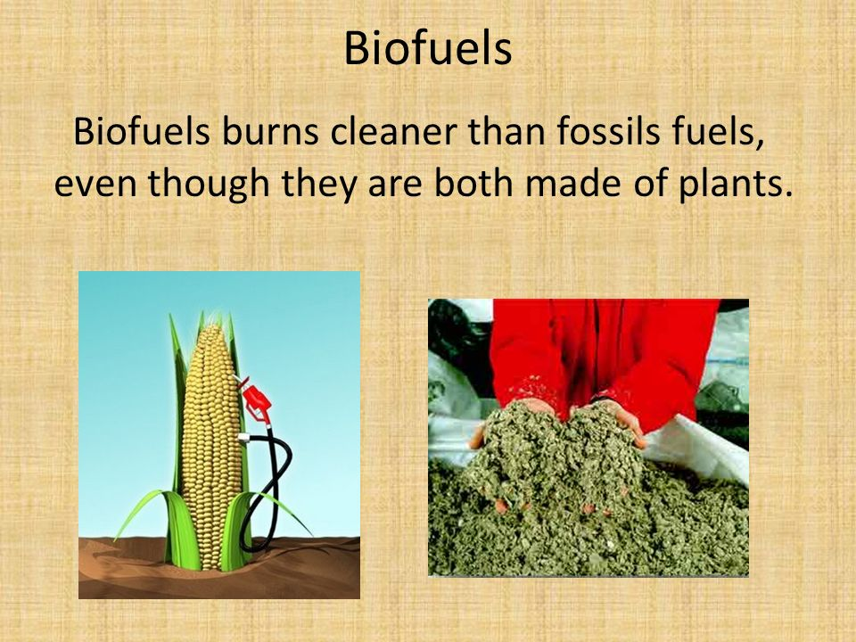 Biofuels Biofuels burns cleaner than fossils fuels, even though they are both made of plants.