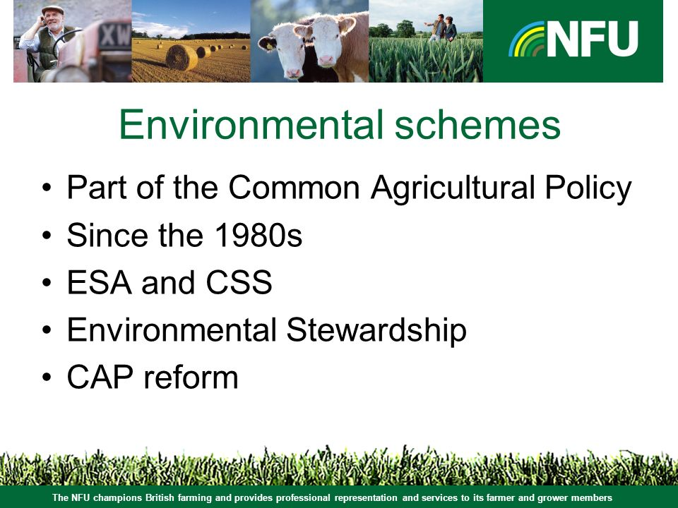 Environmental schemes Part of the Common Agricultural Policy Since the 1980s ESA and CSS Environmental Stewardship CAP reform