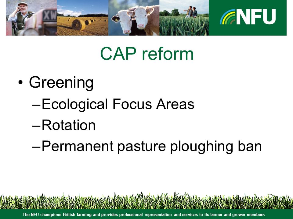 The NFU champions British farming and provides professional representation and services to its farmer and grower members CAP reform Greening –Ecological Focus Areas –Rotation –Permanent pasture ploughing ban