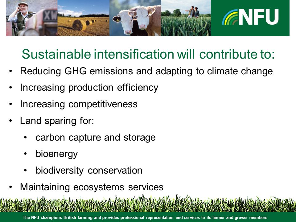 The NFU champions British farming and provides professional representation and services to its farmer and grower members Sustainable intensification will contribute to: Reducing GHG emissions and adapting to climate change Increasing production efficiency Increasing competitiveness Land sparing for: carbon capture and storage bioenergy biodiversity conservation Maintaining ecosystems services