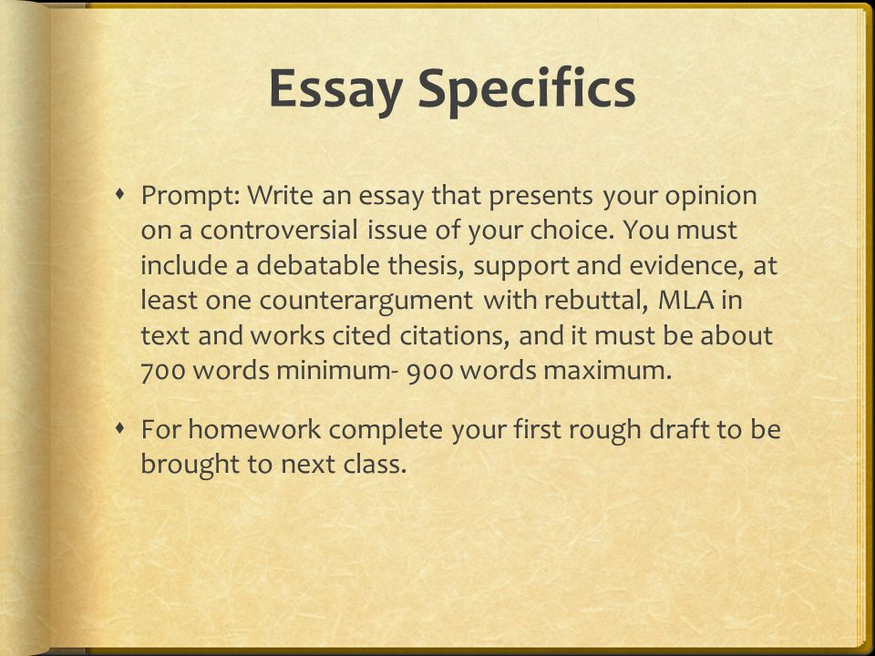 Essay Specifics  Prompt: Write an essay that presents your opinion on a controversial issue of your choice.