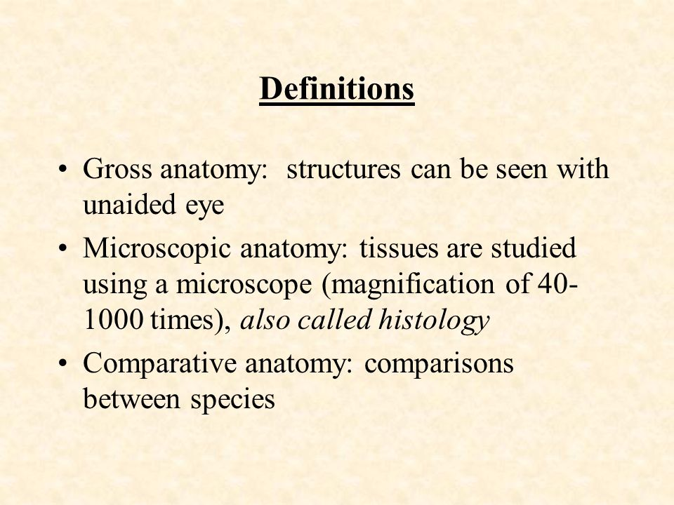 Chapter 10 Anatomy and Physiology of Farm Animals. - ppt download