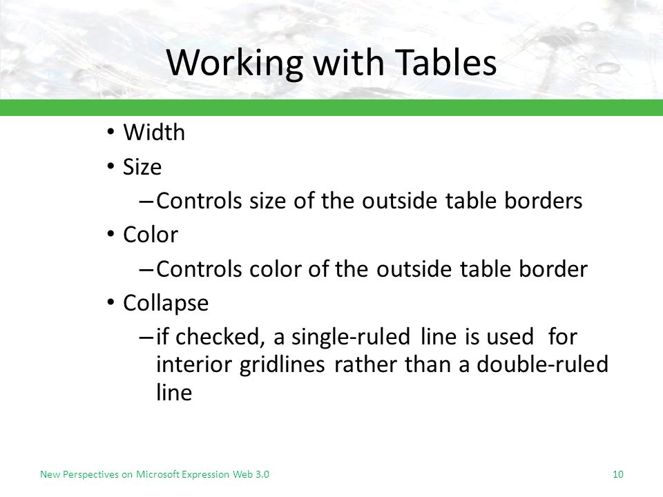 Working with Tables Width Size – Controls size of the outside table borders Color – Controls color of the outside table border Collapse – if checked, a single-ruled line is used for interior gridlines rather than a double-ruled line New Perspectives on Microsoft Expression Web 3.010