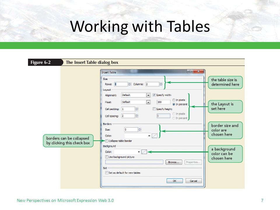 Working with Tables New Perspectives on Microsoft Expression Web 3.07
