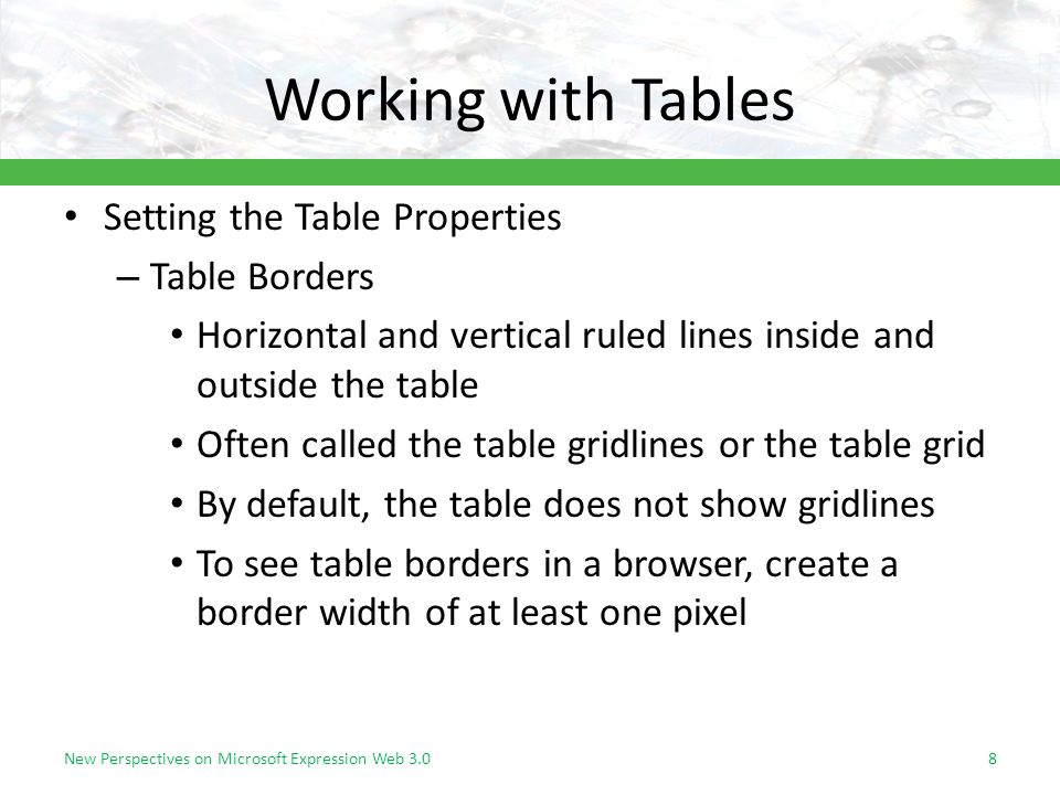 Working with Tables Setting the Table Properties – Table Borders Horizontal and vertical ruled lines inside and outside the table Often called the table gridlines or the table grid By default, the table does not show gridlines To see table borders in a browser, create a border width of at least one pixel New Perspectives on Microsoft Expression Web 3.08