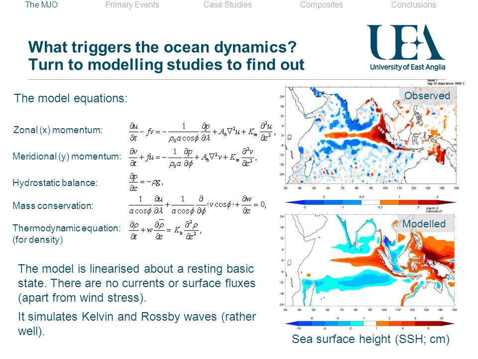 What triggers the ocean dynamics.