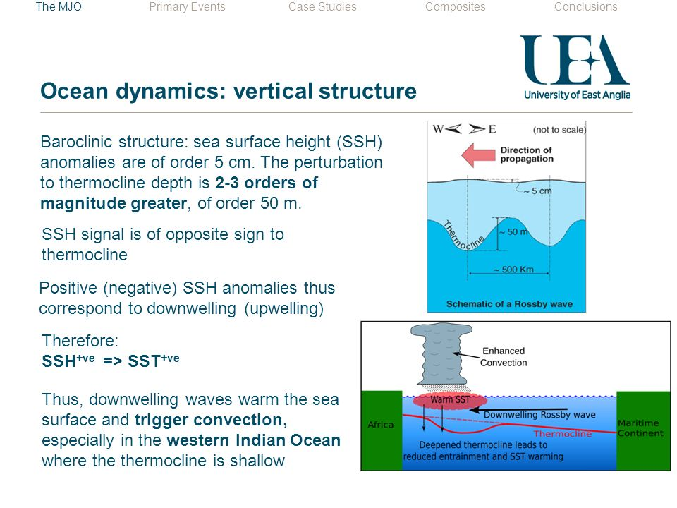 Ocean dynamics: vertical structure Baroclinic structure: sea surface height (SSH) anomalies are of order 5 cm.