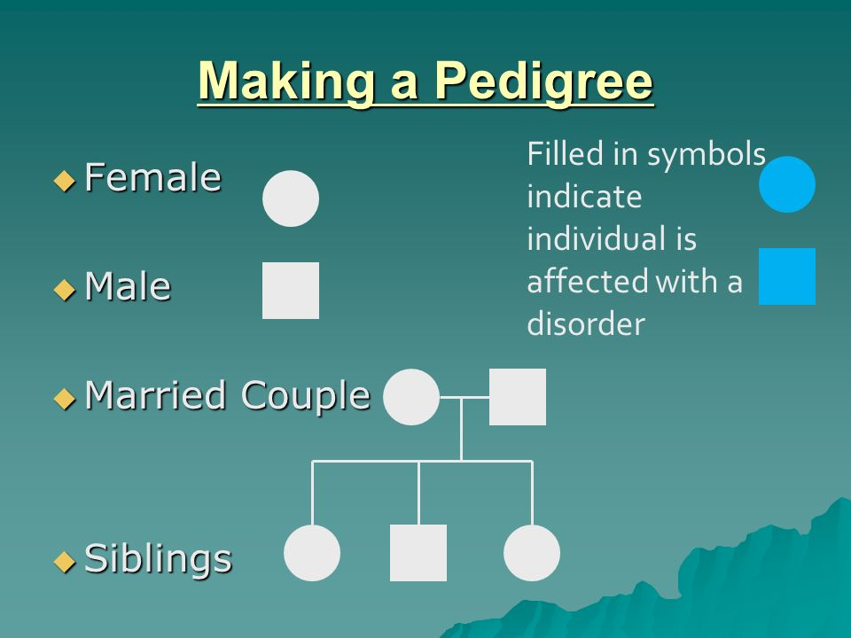 Pedigree definition  Pedigree: a family history that shows how a trait is inherited over several generations  Pedigrees are usually used when parents want to know if they are carriers of a particular disorder