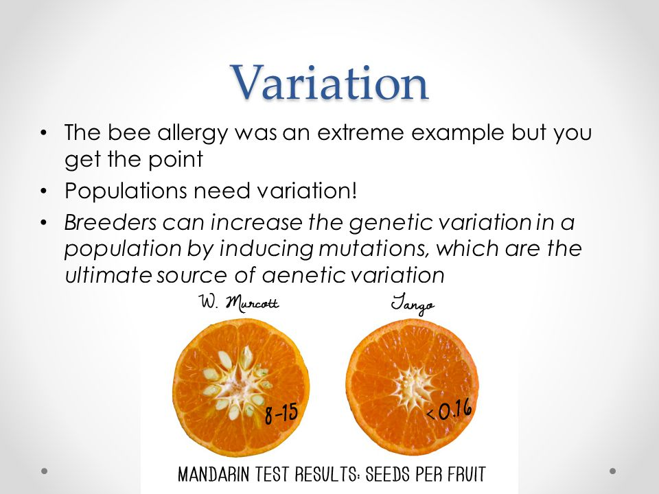 Variation The bee allergy was an extreme example but you get the point Populations need variation.