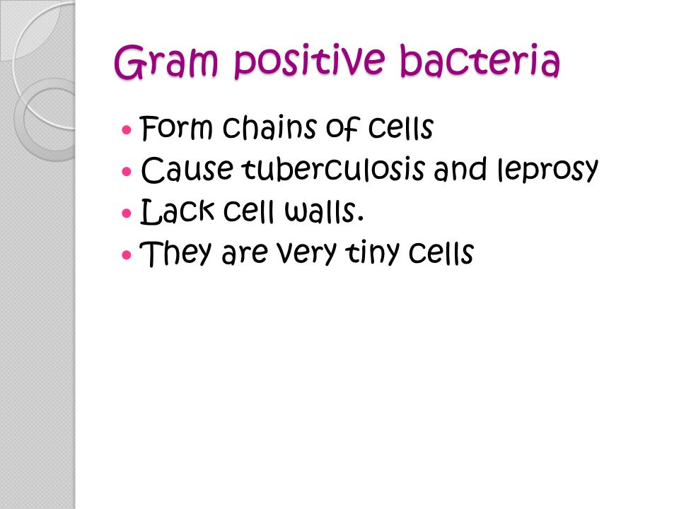 Gram positive bacteria Form chains of cells Cause tuberculosis and leprosy Lack cell walls.
