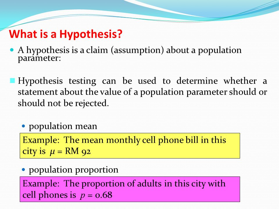 What is a Hypothesis.