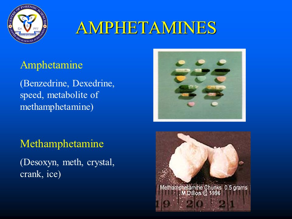 FSC402H Cocaine and Other Stimulants 0ctober 28, ppt download