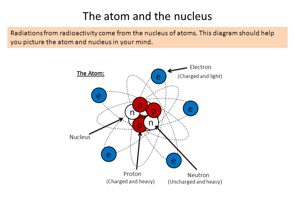 radioactivity how was radioactivity discovered in 1896 the How Many Neutrons in Uranium nucleus the atom proton neutron electron charged and light charged and heavy