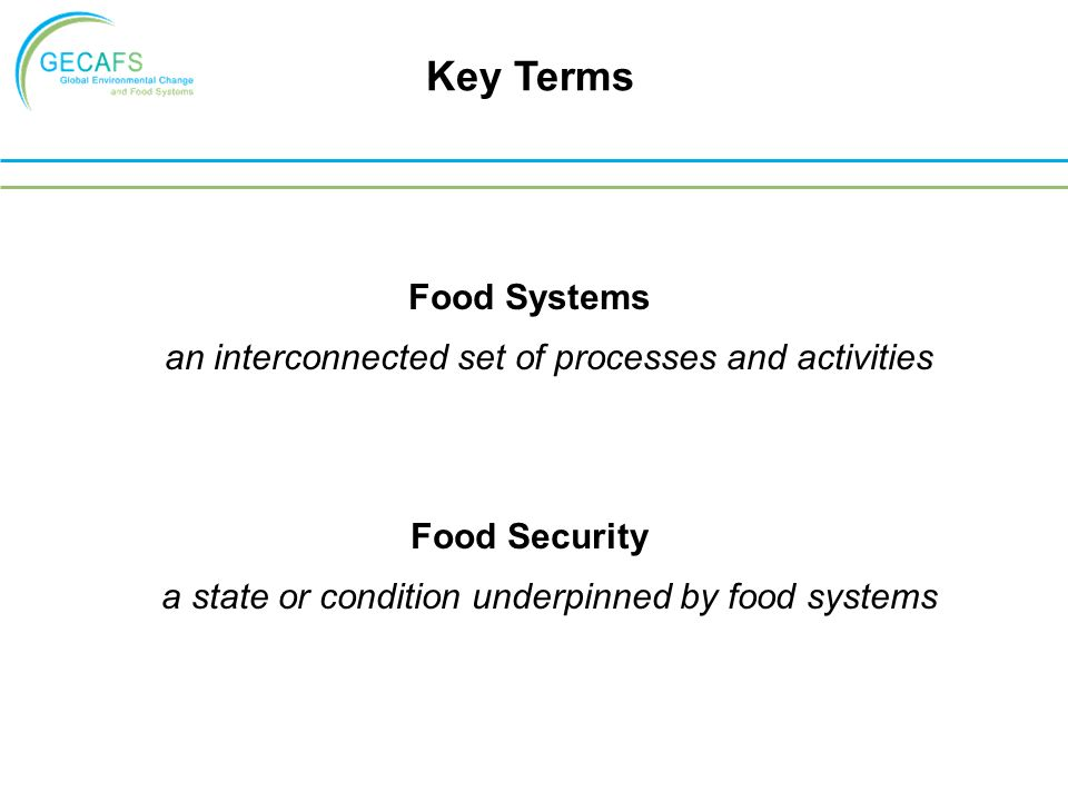 Food Systems an interconnected set of processes and activities Food Security a state or condition underpinned by food systems Key Terms