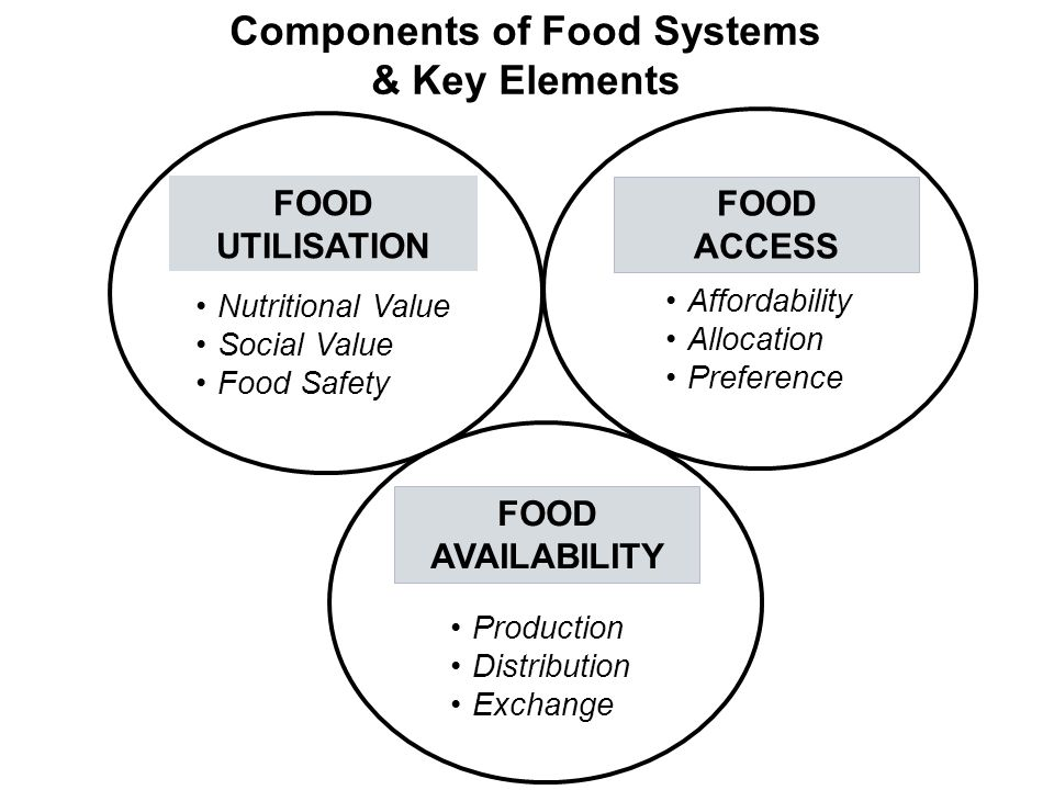 FOOD UTILISATION Components of Food Systems & Key Elements FOOD ACCESS Affordability Allocation Preference Nutritional Value Social Value Food Safety FOOD AVAILABILITY Production Distribution Exchange