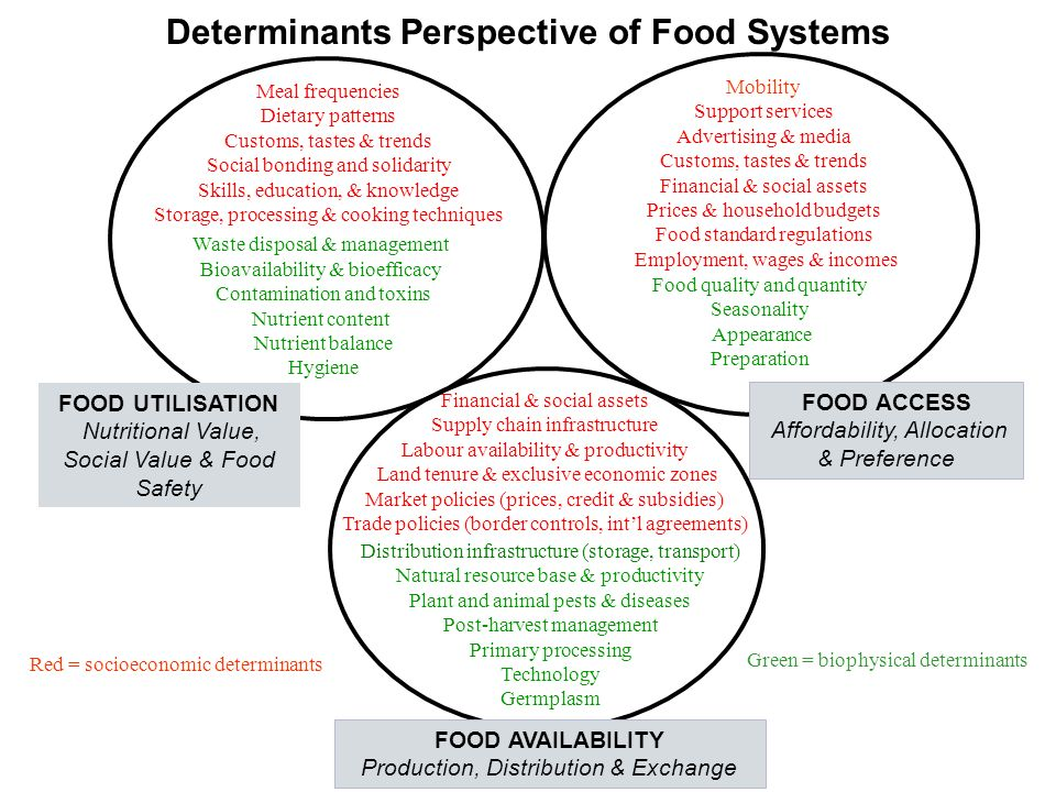 Determinants Perspective of Food Systems Meal frequencies Dietary patterns Customs, tastes & trends Social bonding and solidarity Skills, education, & knowledge Storage, processing & cooking techniques Waste disposal & management Bioavailability & bioefficacy Contamination and toxins Nutrient content Nutrient balance Hygiene Mobility Support services Advertising & media Customs, tastes & trends Financial & social assets Prices & household budgets Food standard regulations Employment, wages & incomes Food quality and quantity Seasonality Appearance Preparation Financial & social assets Supply chain infrastructure Labour availability & productivity Land tenure & exclusive economic zones Market policies (prices, credit & subsidies) Trade policies (border controls, int'l agreements) Distribution infrastructure (storage, transport) Natural resource base & productivity Plant and animal pests & diseases Post-harvest management Primary processing Technology Germplasm FOOD AVAILABILITY Production, Distribution & Exchange FOOD UTILISATION Nutritional Value, Social Value & Food Safety FOOD ACCESS Affordability, Allocation & Preference Red = socioeconomic determinants Green = biophysical determinants