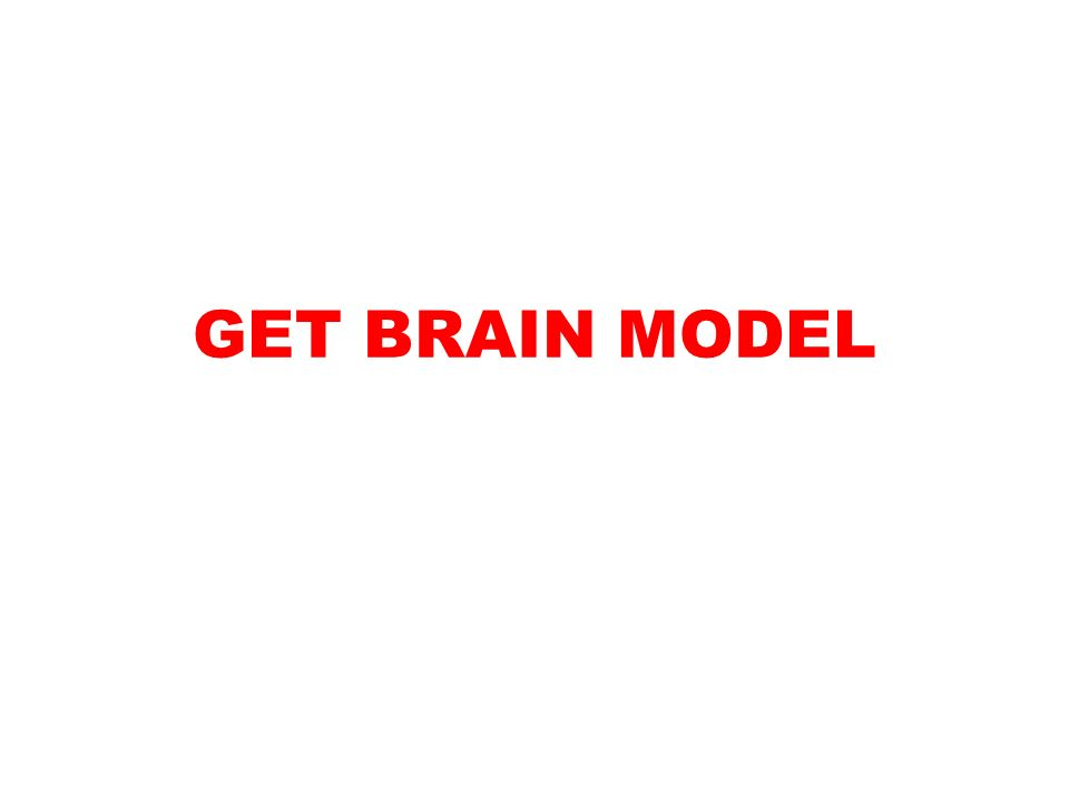 GET BRAIN MODEL  OBJ: Given notes, video, activity sheet