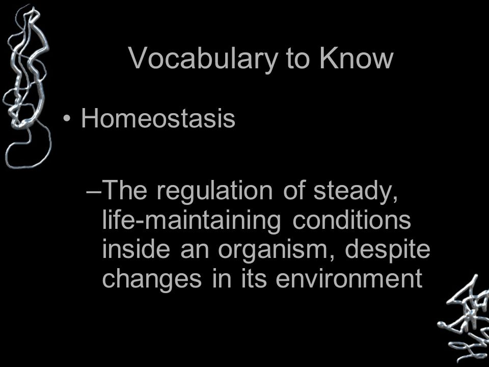 Vocabulary to Know Homeostasis –The regulation of steady, life-maintaining conditions inside an organism, despite changes in its environment