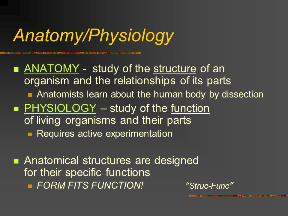 INTRODUCTION TO THE BODY HUMAN ANATOMY & PHYSIOLOGY