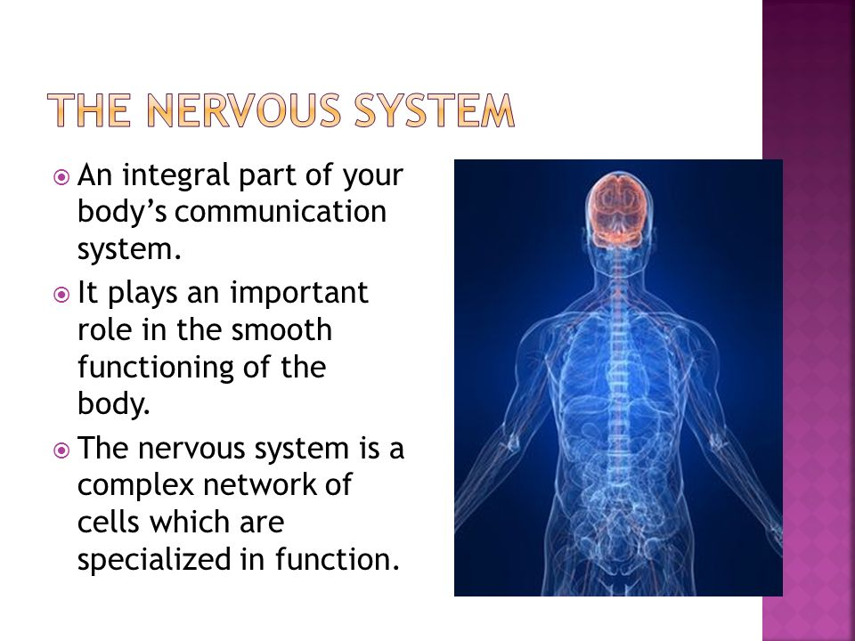  An integral part of your body's communication system.
