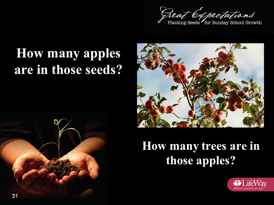 How many apples are in those seeds How many trees are in those apples 31