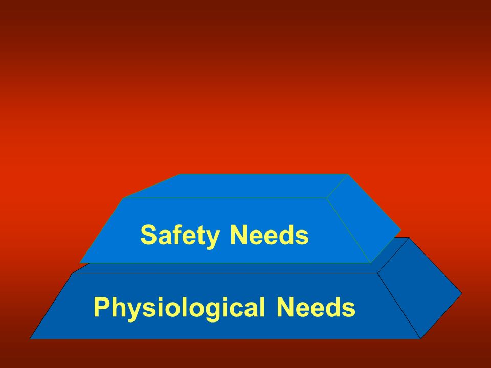 Safety Needs Physiological Needs