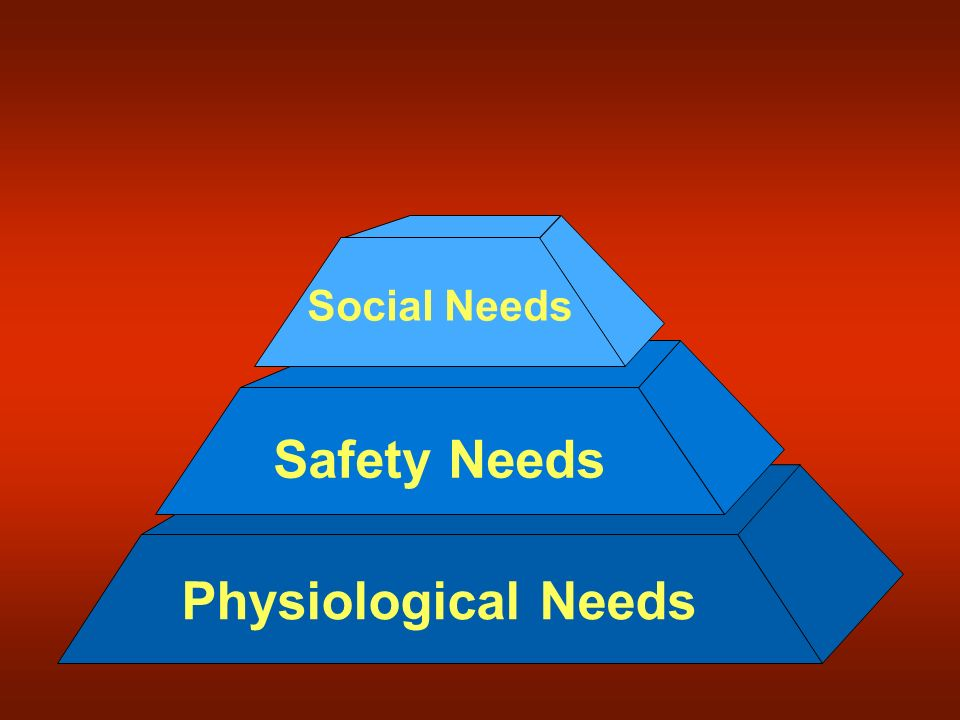 Social Needs Safety Needs Physiological Needs