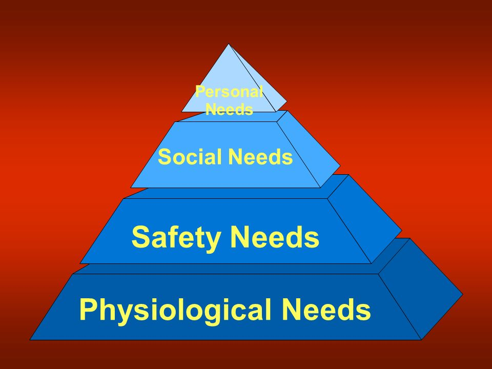 Safety Needs Social Needs Physiological Needs Personal Needs
