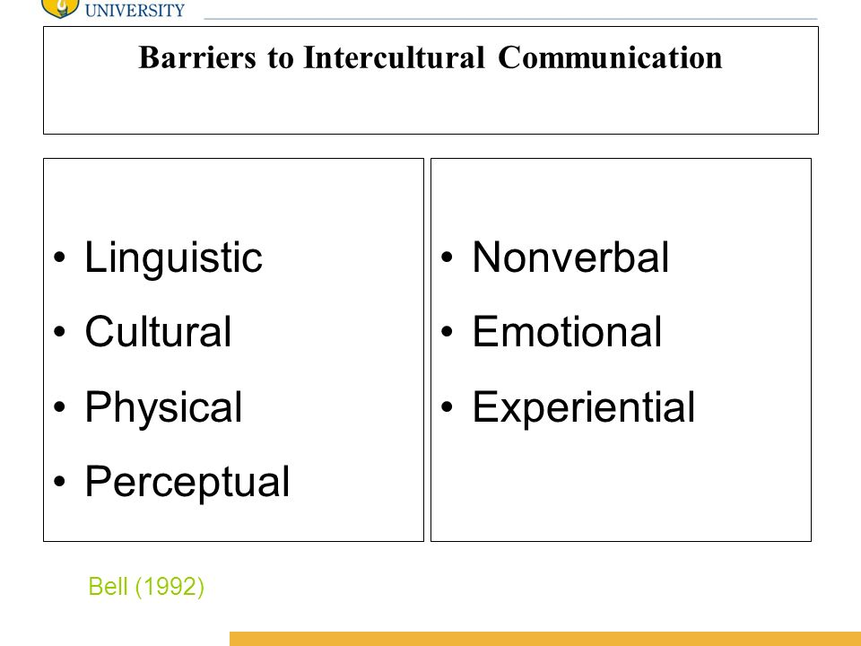 Amity International Business School Communication and