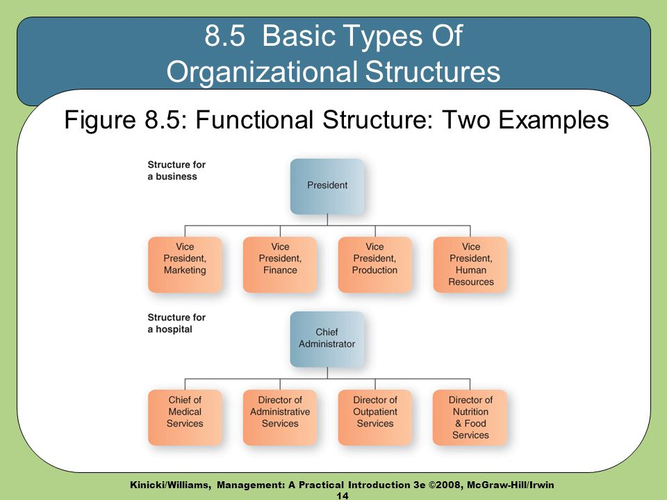Kinicki/Williams, Management: A Practical Introduction 3e ©2008, McGraw-Hill/Irwin Basic Types Of Organizational Structures Figure 8.5: Functional Structure: Two Examples