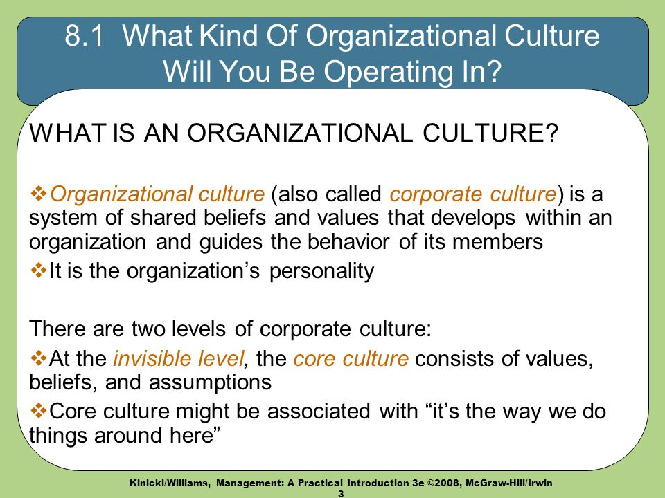 Kinicki/Williams, Management: A Practical Introduction 3e ©2008, McGraw-Hill/Irwin What Kind Of Organizational Culture Will You Be Operating In.