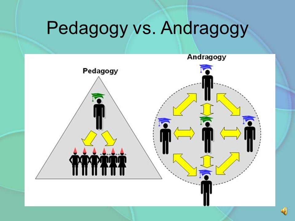Adult andragogy learning principle