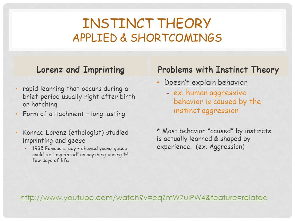 INSTINCT THEORY APPLIED & SHORTCOMINGS Lorenz and Imprinting rapid learning that occurs during a brief period usually right after birth or hatching Form of attachment – long lasting Konrad Lorenz (ethologist) studied imprinting and geese 1935 Famous study – showed young geese could be imprinted on anything during 1 st few days of life Problems with Instinct Theory Doesn't explain behavior -ex.
