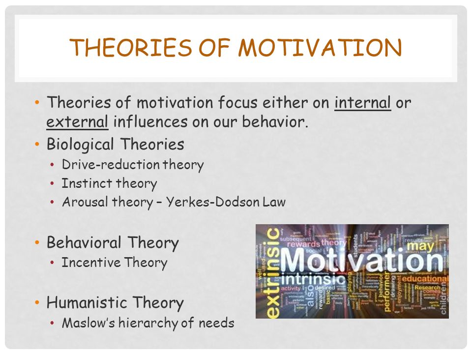THEORIES OF MOTIVATION Theories of motivation focus either on internal or external influences on our behavior.
