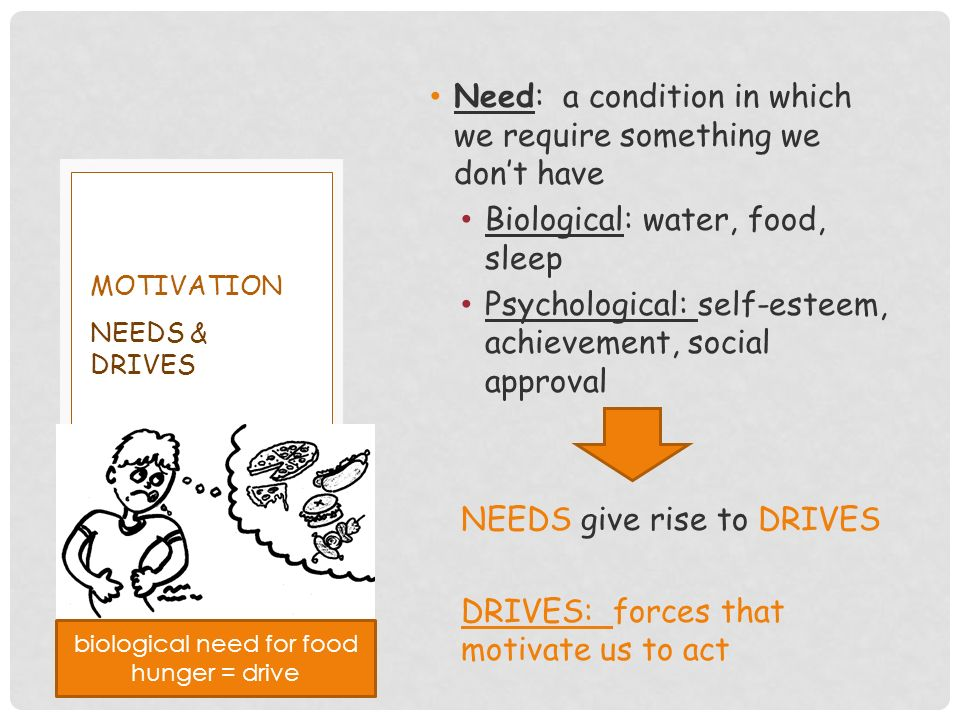 Need: a condition in which we require something we don't have Biological: water, food, sleep Psychological: self-esteem, achievement, social approval NEEDS give rise to DRIVES DRIVES: forces that motivate us to act NEEDS & DRIVES MOTIVATION biological need for food hunger = drive