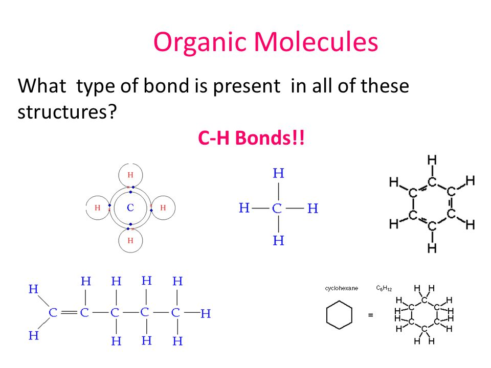Organic Compounds Carbohydrates Organic Molecules All Contain At