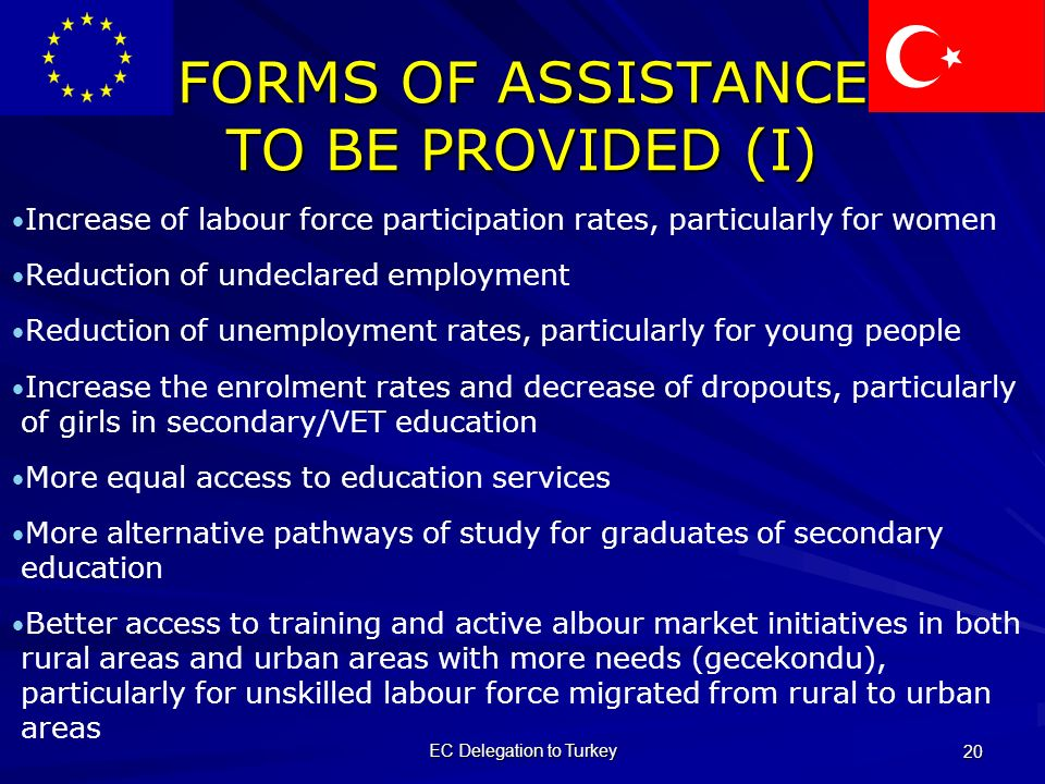 EC Delegation to Turkey 20 FORMS OF ASSISTANCE TO BE PROVIDED (I) Increase of labour force participation rates, particularly for women Reduction of undeclared employment Reduction of unemployment rates, particularly for young people Increase the enrolment rates and decrease of dropouts, particularly of girls in secondary/VET education More equal access to education services More alternative pathways of study for graduates of secondary education Better access to training and active albour market initiatives in both rural areas and urban areas with more needs (gecekondu), particularly for unskilled labour force migrated from rural to urban areas