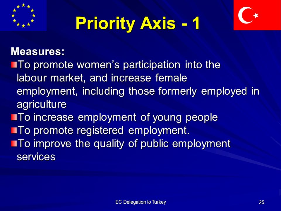EC Delegation to Turkey 25 Priority Axis - 1 Measures: To promote women's participation into the labour market, and increase female labour market, and increase female employment, including those formerly employed in employment, including those formerly employed in agriculture agriculture To increase employment of young people To promote registered employment.