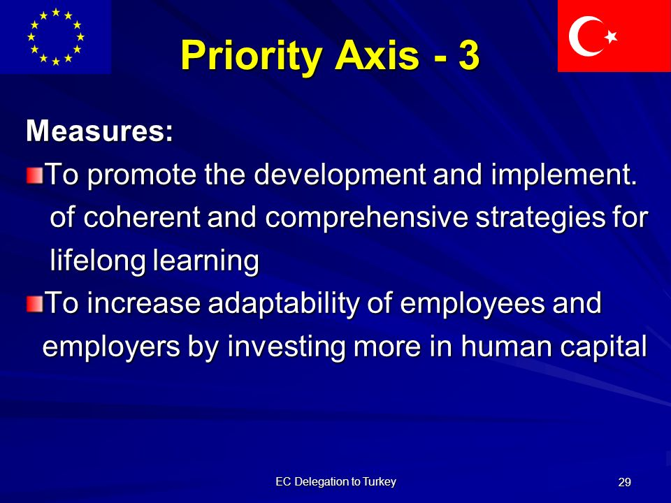 EC Delegation to Turkey 29 Priority Axis - 3 Measures: To promote the development and implement.