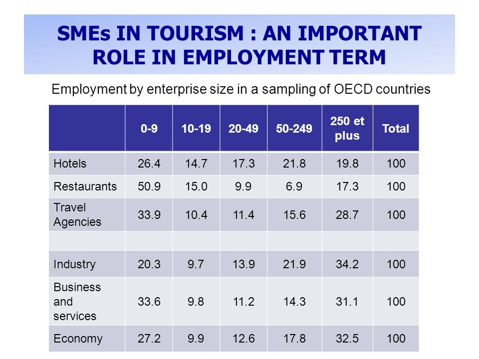 SMEs IN TOURISM : AN IMPORTANT ROLE IN EMPLOYMENT TERM et plus Total Hotels Restaurants Travel Agencies Industry Business and services Economy Employment by enterprise size in a sampling of OECD countries